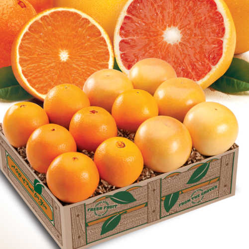 navel-oranges-rr-grapefruit