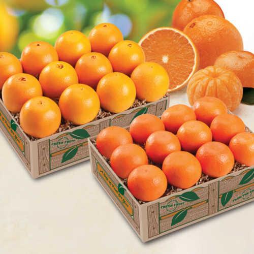 navel-tangerine-combo