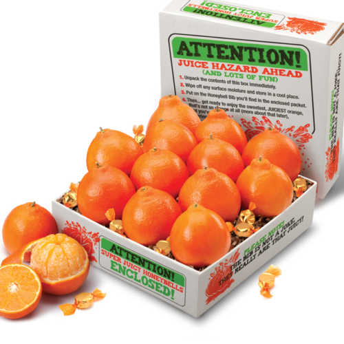super-juicy-honeybells