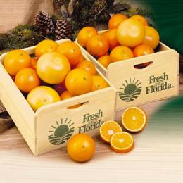 citrus-field-crate