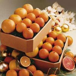 florida-citrus-fruit-club-7-shipment-plan
