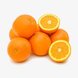 florida-valencia-oranges
