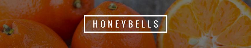 honey-bells-banner
