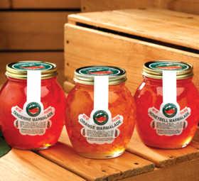 florida-classic-3-jellies