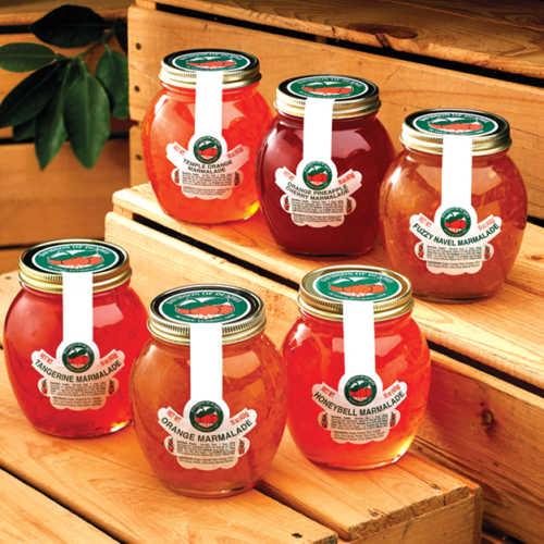 florida-classic-6-jellies