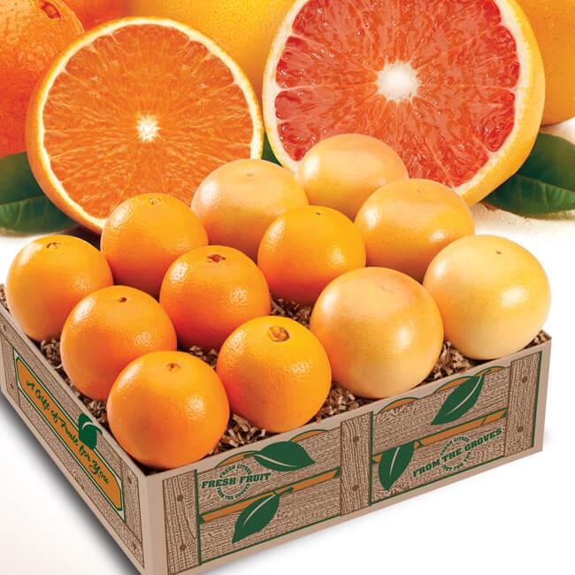 Navel And White Grapefruit