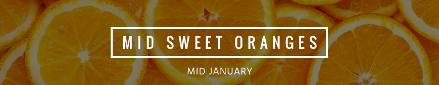 mid-sweet-oranges-banner