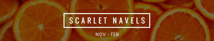 scarlet-navels-banner