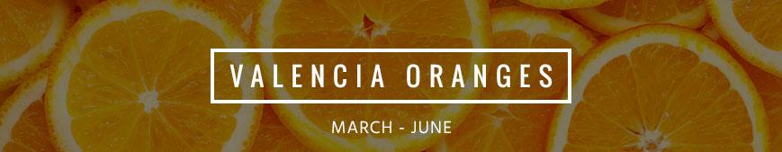 valencia-oranges-banner